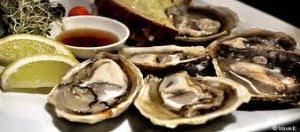 Bluff Oyster & Food Festival