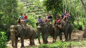 Krabi Elephant Trek