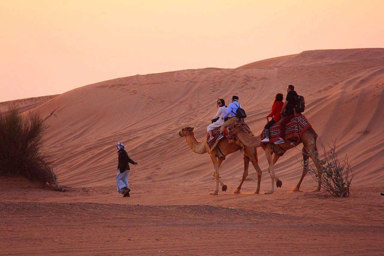 Camel trek - dubai desert excursion